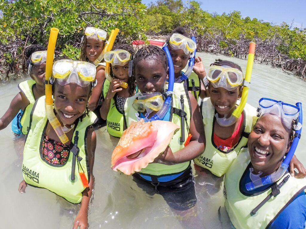 Volunteers in a mangrove