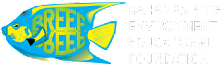 BREEF Logo